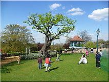 TQ3473 : Horniman Gardens by Marathon