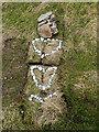 HU6872 : What may be buried here? by Julian Paren