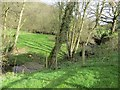 SO3474 : River Redlake by Richard Webb