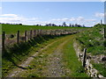 NT8553 : Track Near Remains Of Blackadder House by James T M Towill