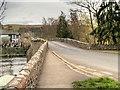 NY4624 : Pooley Bridge by David Dixon