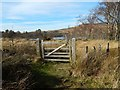 NS3778 : Gate on path by Lairich Rig
