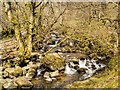 NY3920 : Aira Beck Above The Waterfall by David Dixon