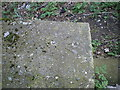 SJ7009 : OS rivet & cutmark, Stafford Park footbridge by Richard Law