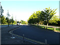 SU9850 : Campus Road on Stag Hill Campus at The University of Surrey by Adrian Cable