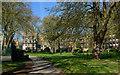 TQ2982 : St James' Gardens (2) by The Carlisle Kid