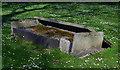 TQ2982 : St James' Gardens (9) by The Carlisle Kid