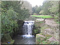 NZ2567 : Waterfall on the Ouse Burn, Jesmond Dene by Les Hull