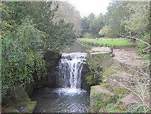 NZ2567 : Waterfall on the Ouse Burn, Jesmond Dene by Les Hull