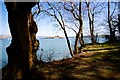 SX4652 : Drakes Island from Raveness Point Mount Edgcumbe by Peter Skynner
