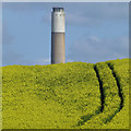 SK5027 : Rape field and chimney by David Lally