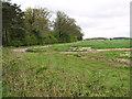 TG1335 : Fields by Nuttery Plantation by Evelyn Simak