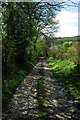 SO3669 : Footpath near Birtley by John Winder