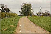 TF3064 : Claxby Pluckacre by Richard Croft