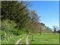 SD7051 : Footpath between Newton and Slaidburn by Chris Heaton