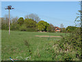 SU8279 : Field, Knowl Hill by Alan Hunt