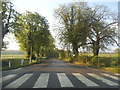 TQ4855 : Zebra crossing outside Combe Bank school by David Howard