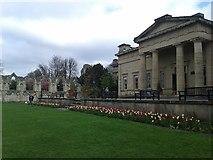 SE5952 : Yorkshire Museum by DS Pugh