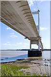 ST5590 : The Severn Bridge by Stuart Wilding