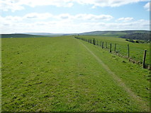 TQ3710 : South Downs Way near Balmer Down by Dave Kelly