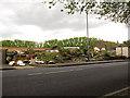 TQ3678 : Derelict site, Grinstead Road, Deptford by Stephen Craven