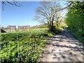 SD5910 : Arley Lane by David Dixon
