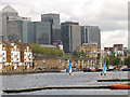 TQ3679 : Sailing on Greenland Dock by Stephen Craven