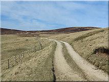 NN9979 : Track to Fealar Lodge by William Starkey