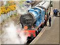 J4792 : Steam locomotive no 85, Whitehead - April 2014(1) by Albert Bridge