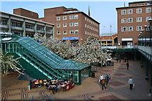 SP3378 : Pedestrian precinct, Coventry city centre by David Martin
