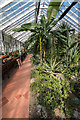 TQ3092 : Conservatory, Broomfield Park, Palmers Green, London N13 by Christine Matthews