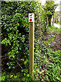 TM4384 : Sotterley Trail signpost by Adrian Cable