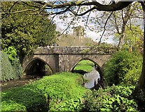 SE2768 : Bridge over the Skell, Fountains Abbey by Derek Harper