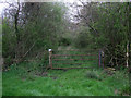 SU0789 : Bridleway near Coxhill Farm by Vieve Forward