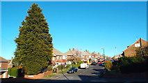 NZ3955 : Larkfield Road, Sunderland by Malc McDonald
