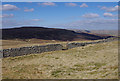 SD8473 : Stone wall, Pen-y-ghent by Ian Taylor