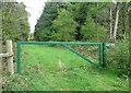 TG0033 : Track into Great Heath Plantation by Evelyn Simak