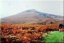 SO2718 : Path to Sugar Loaf near Abergavenny by Clint Mann