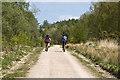 SO6214 : Cycle track, Serridge Green by Stuart Wilding