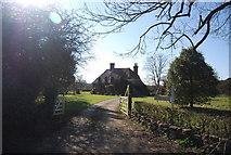TQ9144 : Rose Farm by N Chadwick