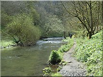 SK1272 : River Wye and valley footpath by Andrew Hill