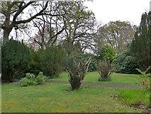 SZ0095 : Brief perambulation of St John, Broadstone (vi) by Basher Eyre