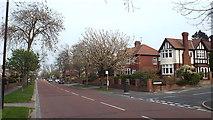 NZ3855 : Queen Alexandra Road, Sunderland by Malc McDonald