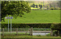 J4067 : Field gate, Moneyreagh by Albert Bridge