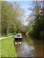 SO1520 : The Monmouthshire & Brecon Canal at Llangynidr by Rod Allday