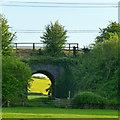 SK6132 : Path under a railway by David Lally