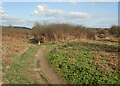 SS8477 : Public footpath in duneland near Newton by eswales