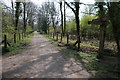 SO6413 : Cycle track at Crabtreehill Plantation by Philip Halling