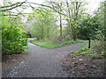 NS4760 : Junction of Paths on the Tannahill Walkway in Glen Park by G Laird