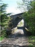 NS5160 : Road Bridge and Railway Bridge on Salterland Road north-east of Barrhead by G Laird